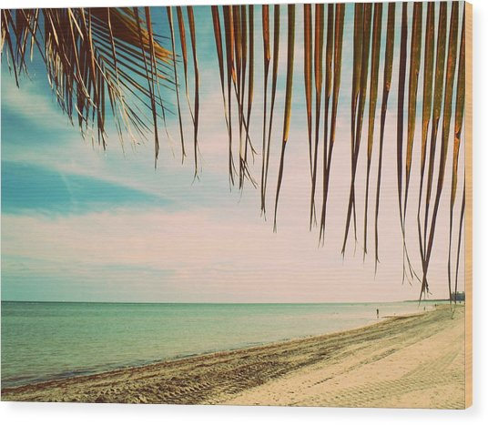 Seaside Canopy Wood Print by JAMART Photography