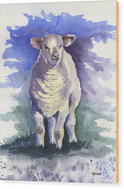 Shellies Lamb Wood Print