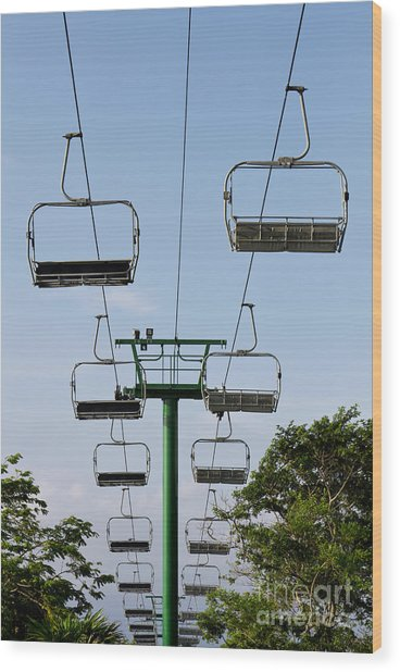 Sky Ride Wood Print by Blink Images