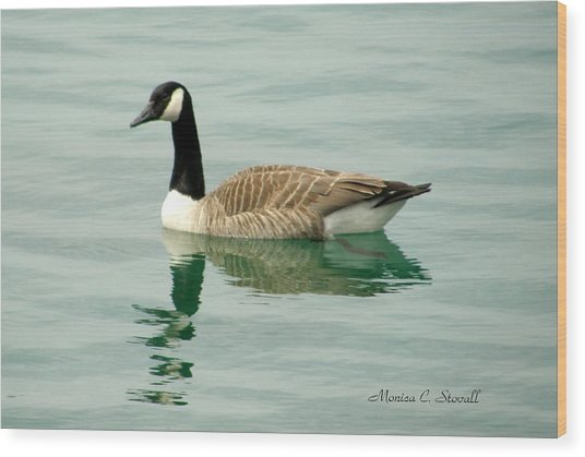 Spring Collection - Goose In Bay Harbor Wood Print