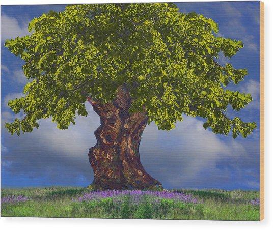 Summer Landscape Wood Print by Vladimir Kholostykh