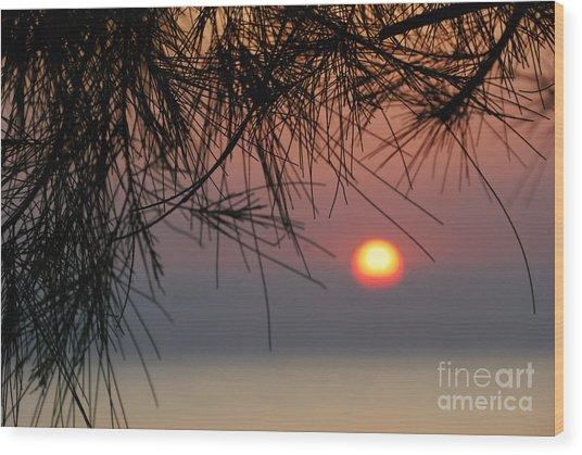 Sunset In Zanzibar Wood Print by Alan Clifford