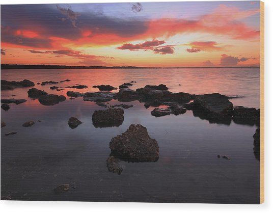 Swan Bay Sunset Wood Print