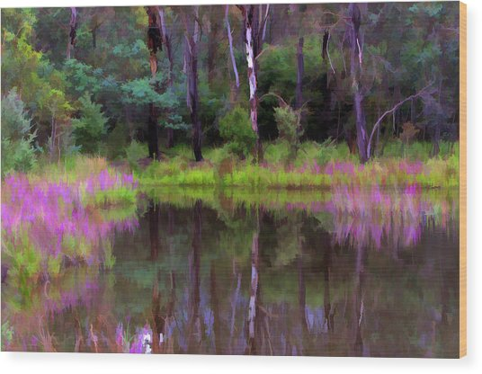 Tidbinbilla Reflections Wood Print