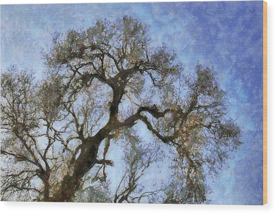 Tree Wood Print by Algimantas Gavenauskas