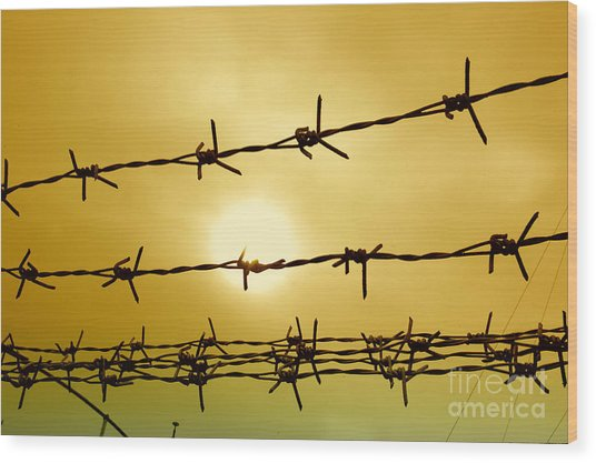 Wire Fence Wood Print by Antoni Halim