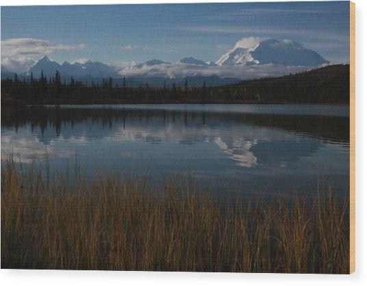 Wonder Lake Denali National Park Wood Print