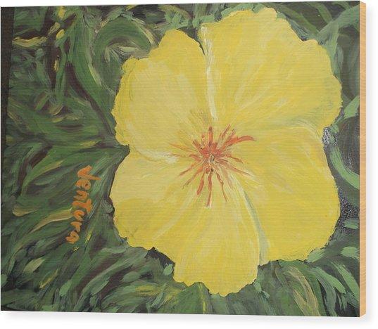 Yellow Alamander Wood Print