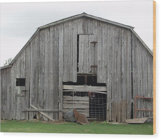 Barn Wood Print by Ronald Olivier