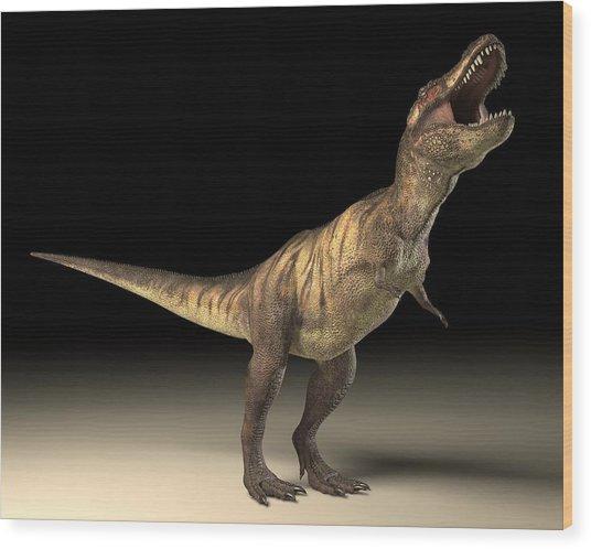 Tyrannosaurus Rex Dinosaur Wood Print by Roger Harris