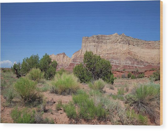 San Rafael Swell Wood Print by Southern Utah  Photography