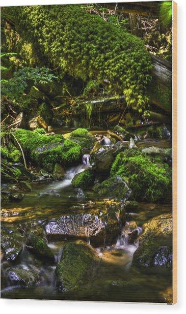 Lost Girl Creek Wood Print by Grover Woessner