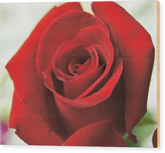 Rose Wood Print by Gornganogphatchara Kalapun