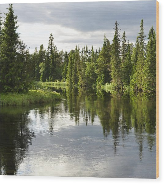 Calm Lake Reflection Wood Print by Conny Sjostrom