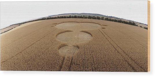 Crop Formation In Form Of Mandelbrot Set Wood Print by David Parker