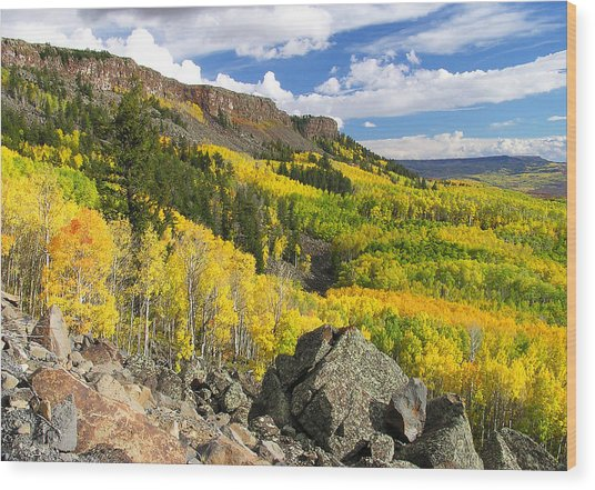 Grand Mesa Autumn Vista Wood Print
