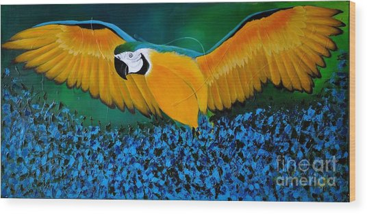 Macaw On The Rise Wood Print