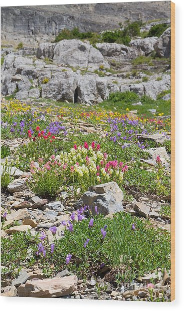 Wood Print featuring the photograph Mother Nature's Master Garden by Katie LaSalle-Lowery
