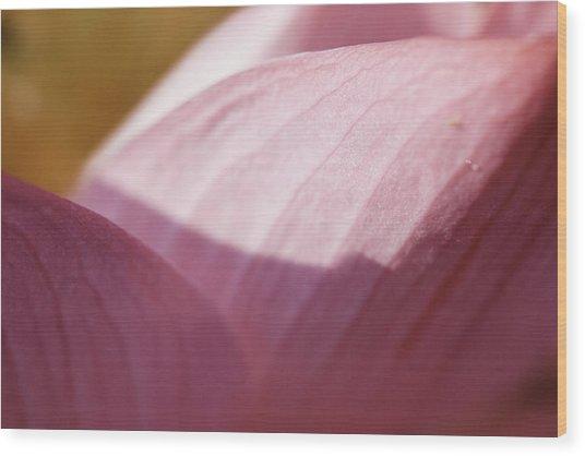Nelumbo 'red Scarf' Wood Print