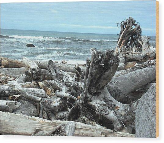 Rialto Beach La Push Wood Print