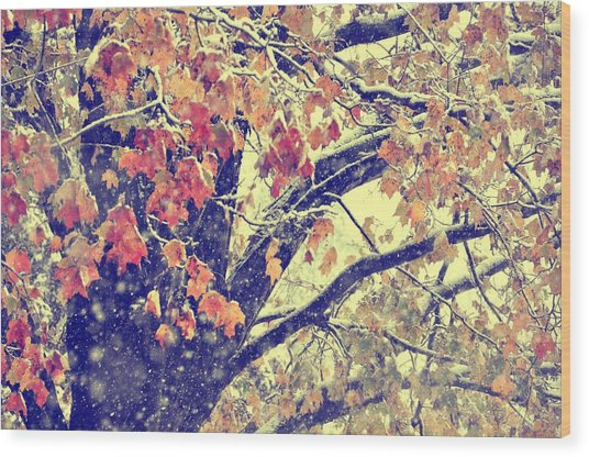 Winter Autumn Snows Wood Print by JAMART Photography