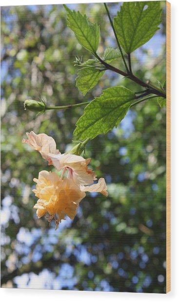 Yellow Hibiscus Wood Print by Natalija Wortman