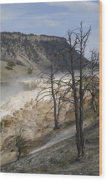 Yellowstone Nat'l Park Wood Print