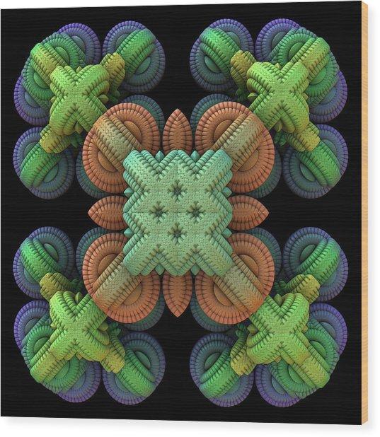 20120210-1 Wood Print