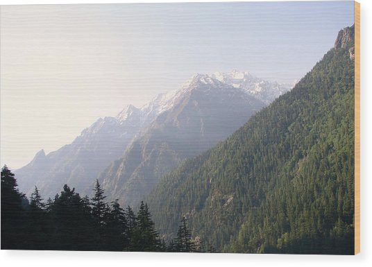 Splendors Of Himalayas Wood Print by Anand Swaroop Manchiraju