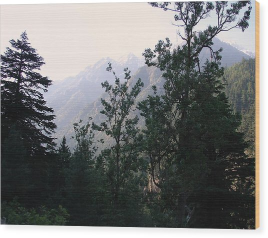Splendors Of Himalayas Wood Print by Anand Swaroop Manchiraju