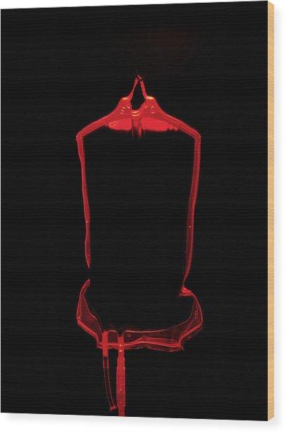 Blood Bag Wood Print by Tek Image