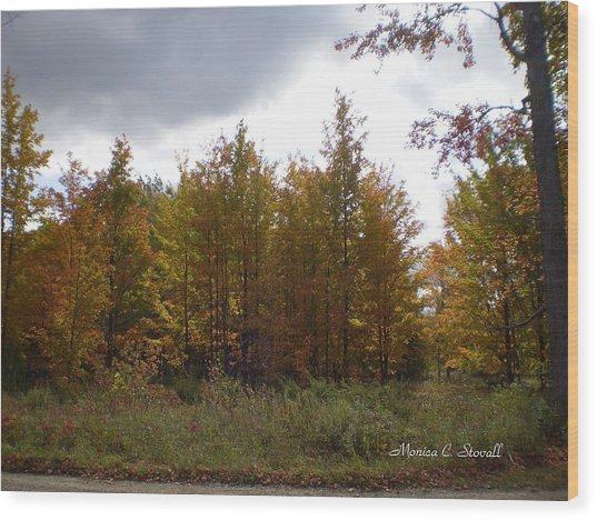 Fall Colors Collection - Michigan Wood Print