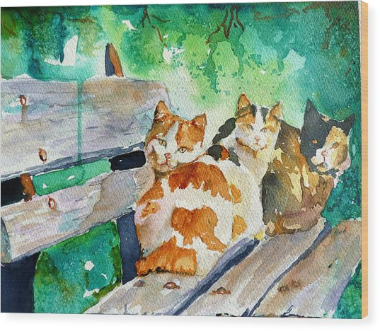 3 On A Bench Wood Print