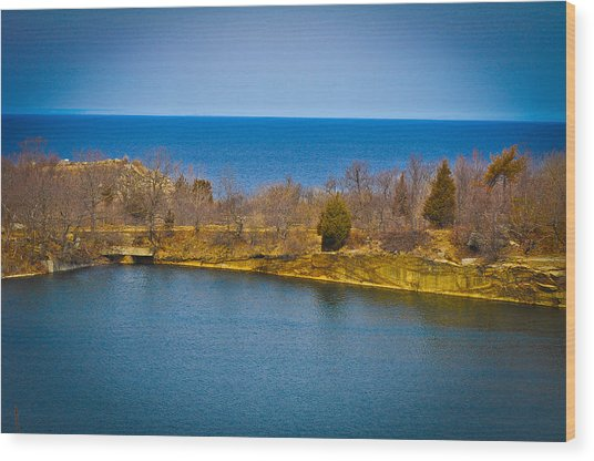 Rockport Park Wood Print by Erica McLellan