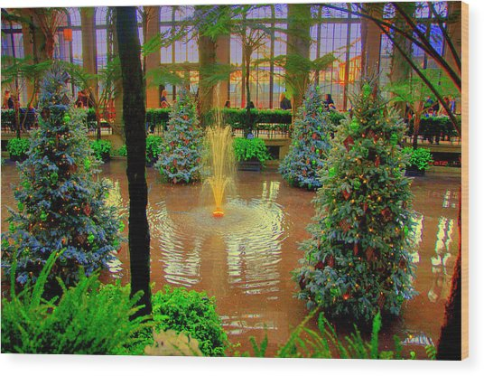 Dupont Gardens Wood Print by Aron Chervin