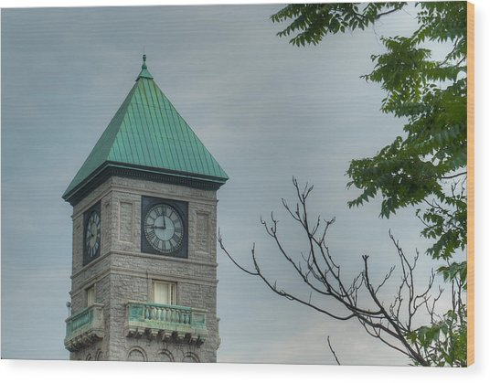 Mount Royal Station Wood Print
