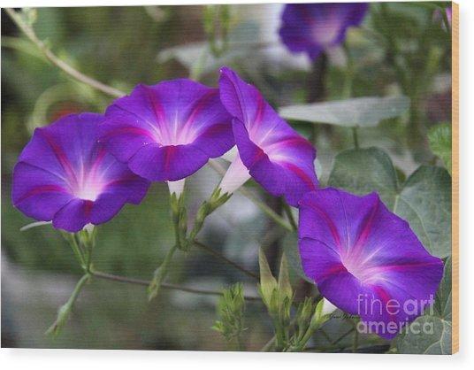 4 Purples Wood Print by Yumi Johnson
