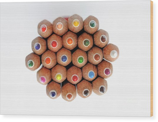Row Of Colorful Crayons Wood Print by Sami Sarkis