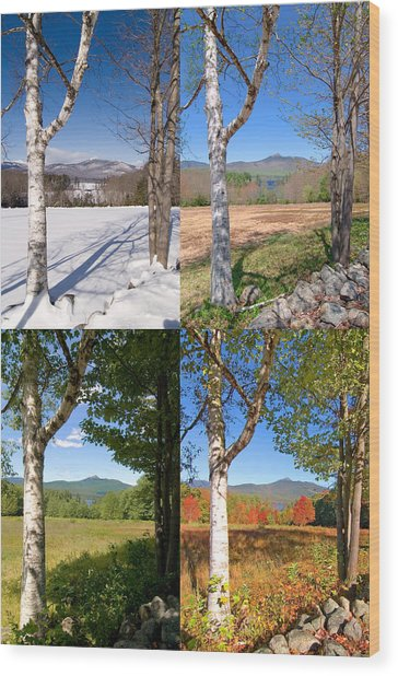 4 Seasons Chocurua Vertical Wood Print
