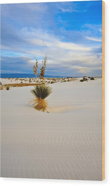 White Sands Wood Print by Larry Gohl