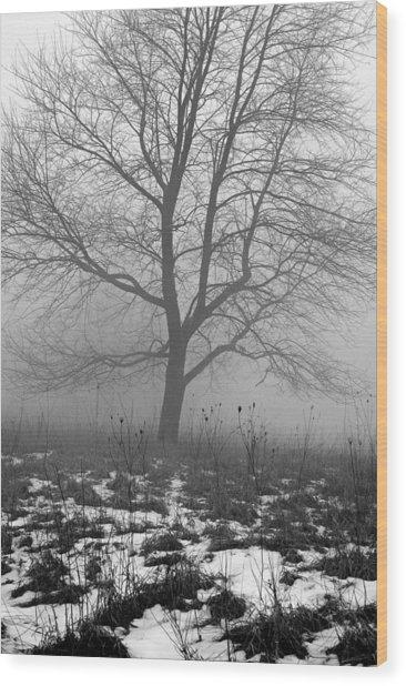 Tippecanoe County Indiana Wood Print by Marsha Williamson Mohr