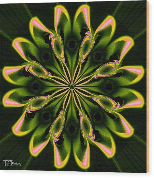 558 Wood Print