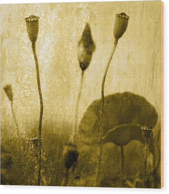 Poppy Art Image Wood Print by Falko Follert