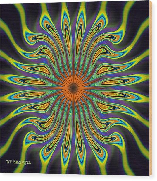 677 Wood Print by Rick Thiemke