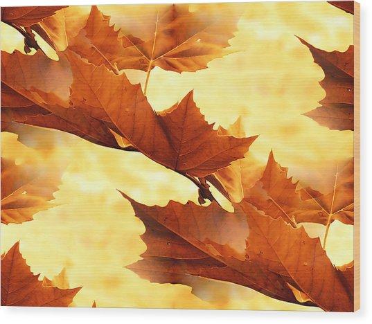 Autumn Wood Print by Design Windmill