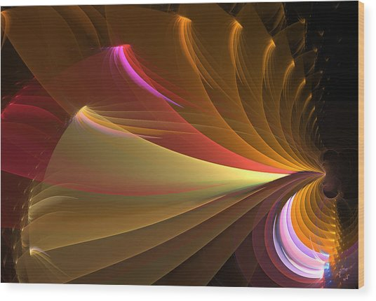 749 Wood Print by Lar Matre
