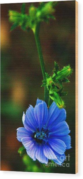 Flower Wood Print by Lenroy Johnson