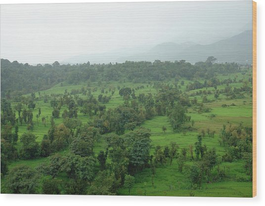 A Beautiful Green Countryside Wood Print