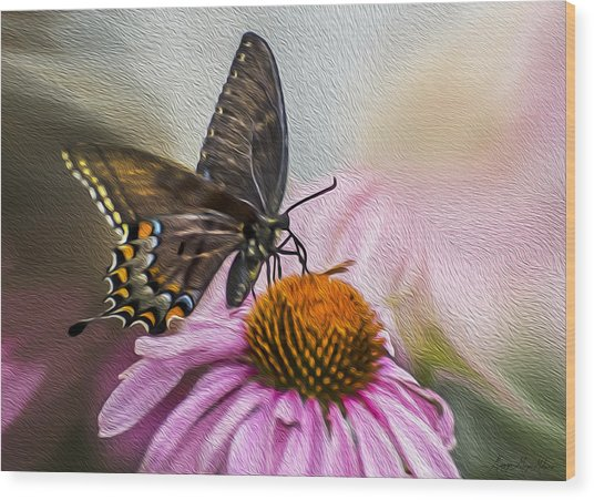 A Butterfly's Magical Moment Wood Print