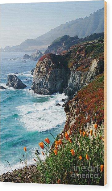 A Coastal High Wood Print